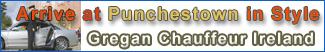 Punchestown Transport - Gregan Chauffeur Ireland