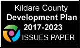 County Development Plan Issues Paper