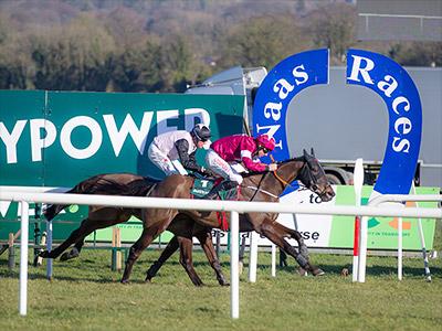 Cheltenham Dark Horses Make Their Case at Naas