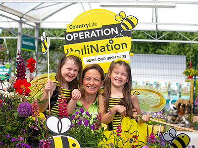 Operation PolliNation Creating a Buzz in Kildare Countryside